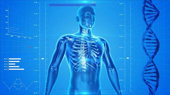 digital_health_for_human