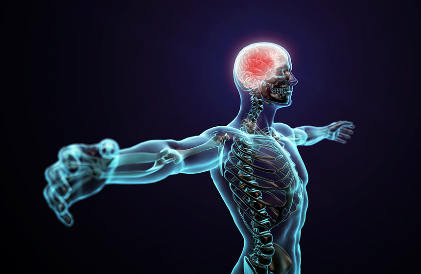 stroke and stroke recovery